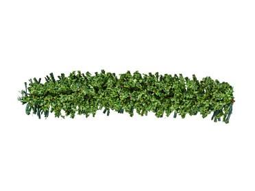 Hecken hellgrün, 7 cm lang